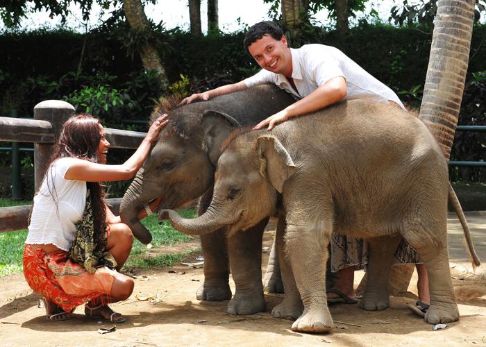 Słonie z opiekunami